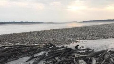 Assam districts bordering Arunachal Pradesh on flood alert