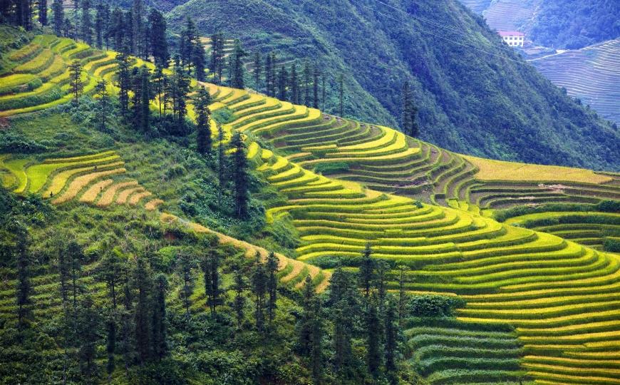 Vietnam safe to travel around, tourism officials assure