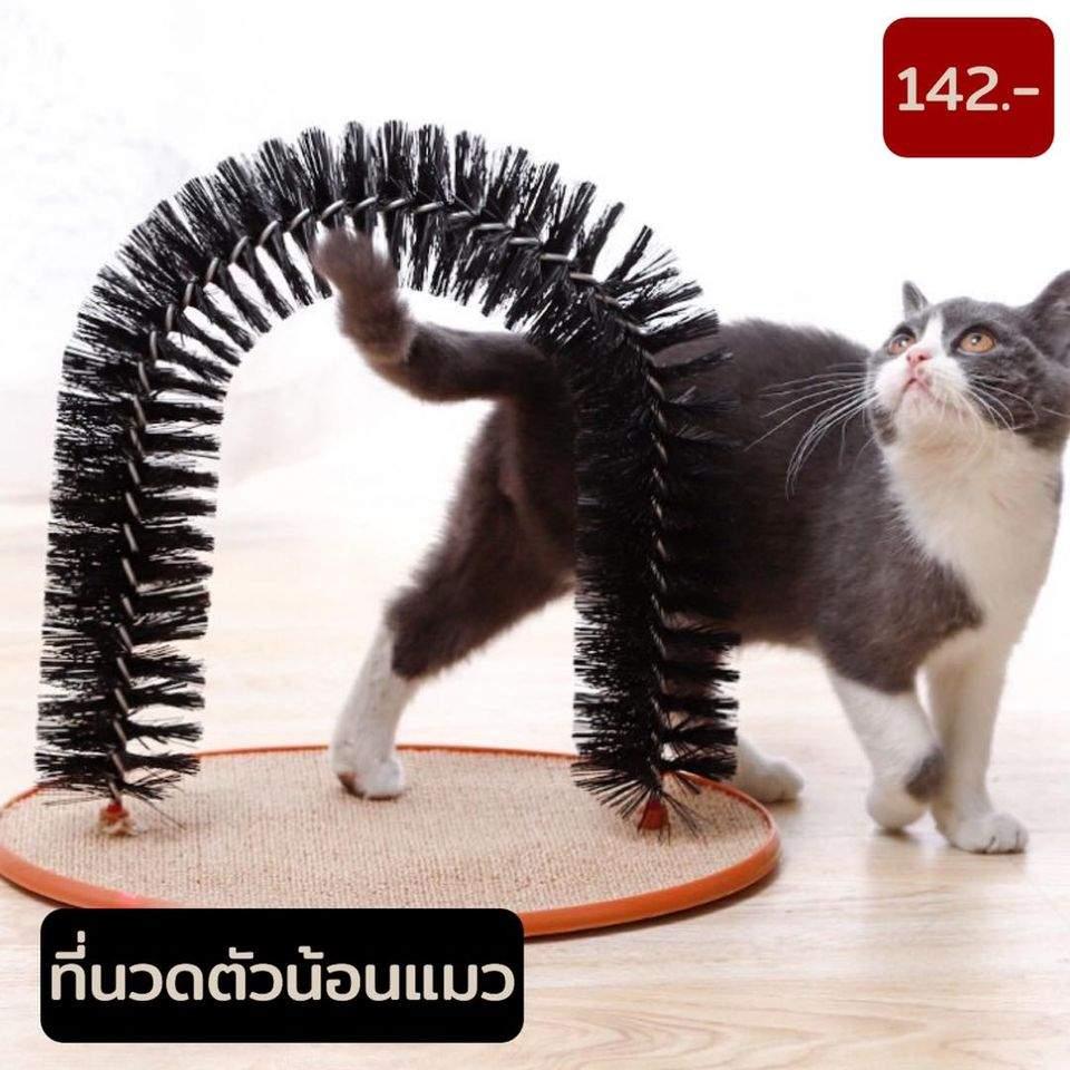ที่นวดตัวแมว