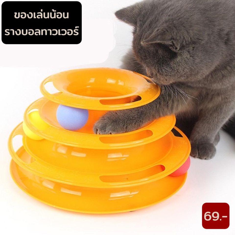 ของเล่นแมว รางบอล