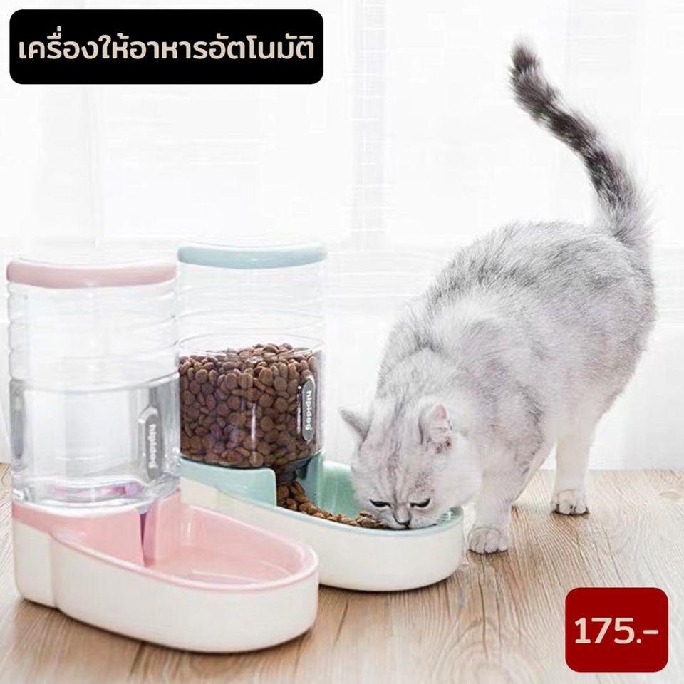 เครื่องให้อาหารแมว