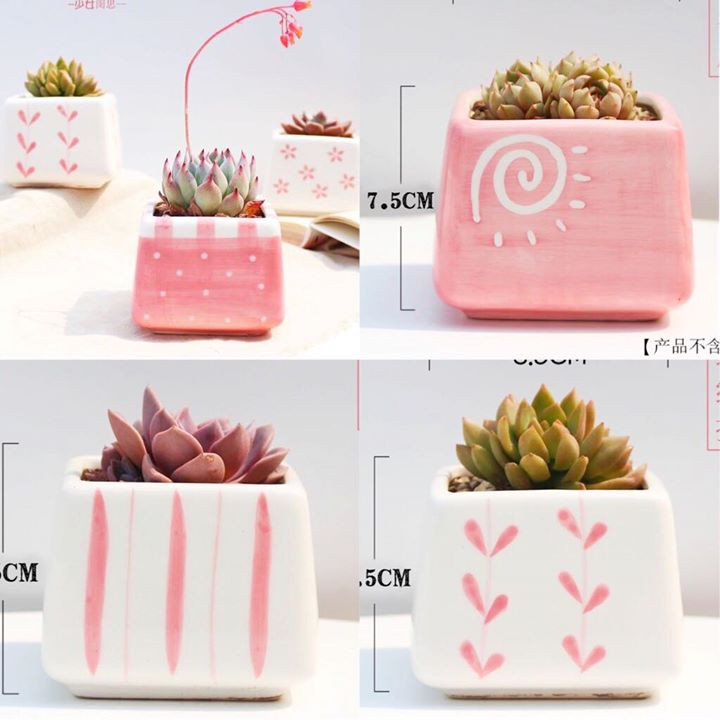 5 flower pots