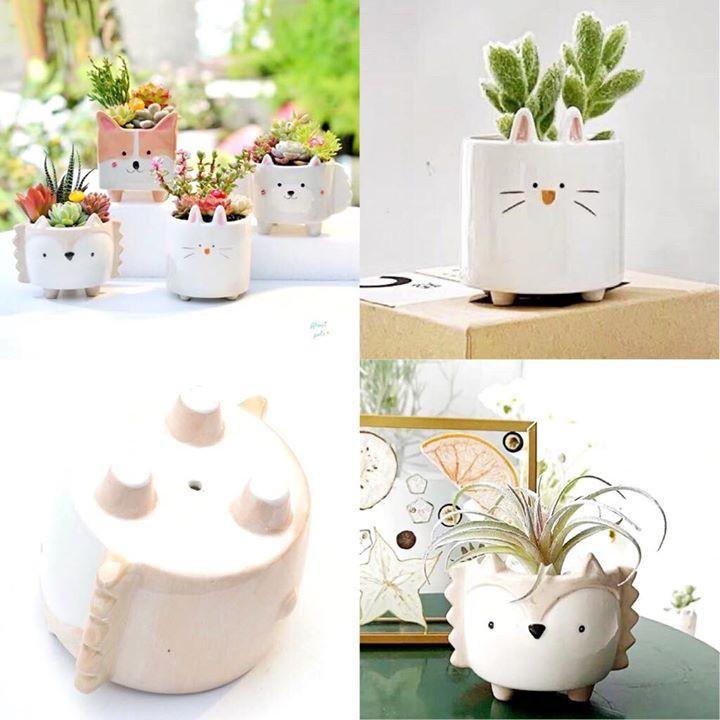 4 plant pots