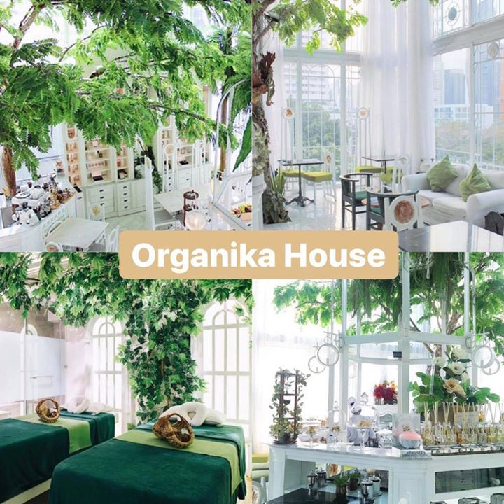 9 organika house
