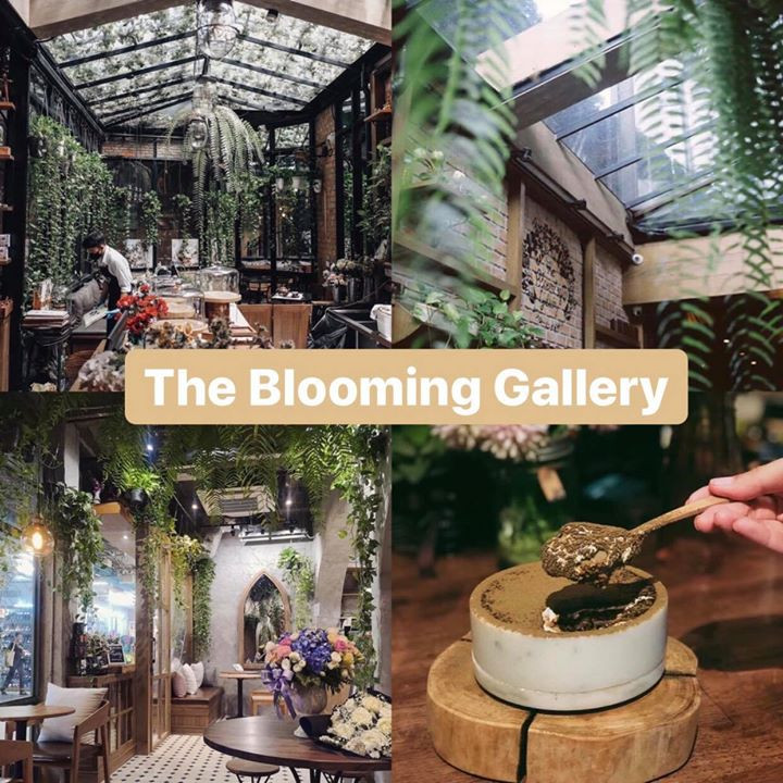 4 the blooming gallery