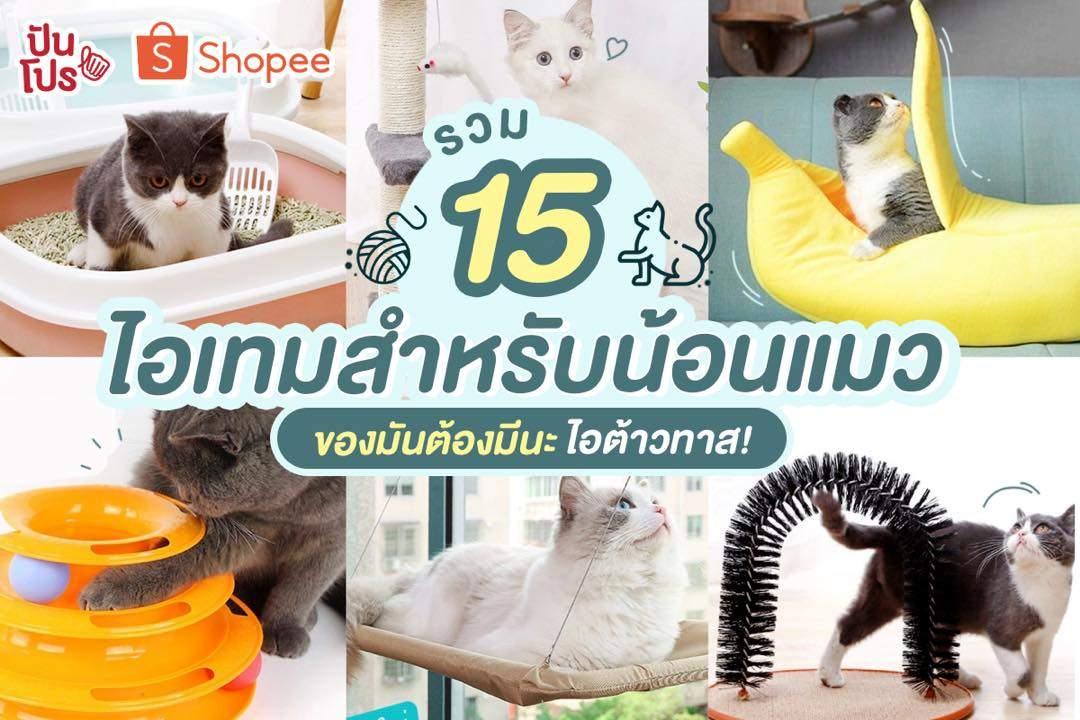 Shopee รวม 15 ของใช้น้องแมวสุดคิ้วท์ ให้มนุษย์ทาสเตรียมควักตังค์จ้าา!!
