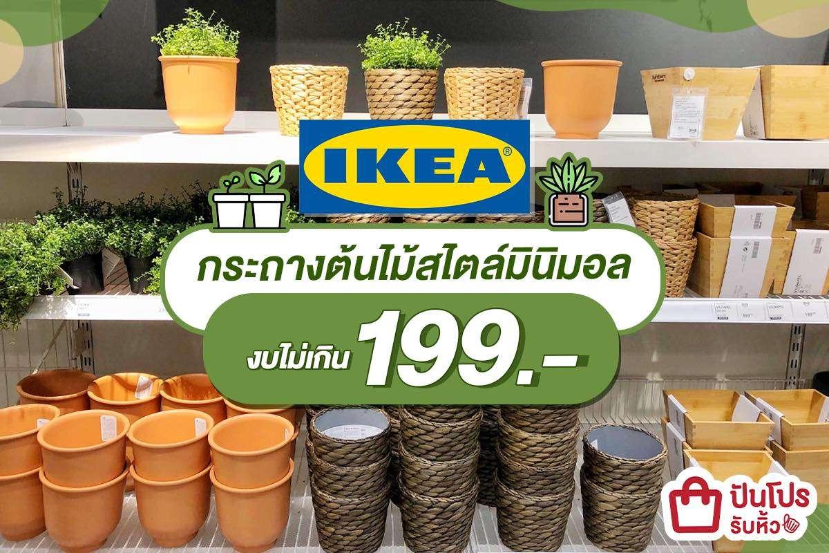 IKEA รวมกระถางต้นไม้เรียบเก๋ สไตล์มินิมอล ราคาไม่เกิน 199 บาท