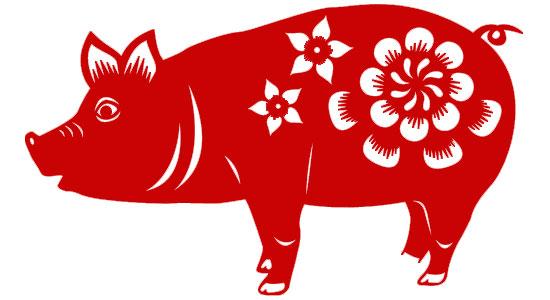 Warna Ideal Tahun Babi
