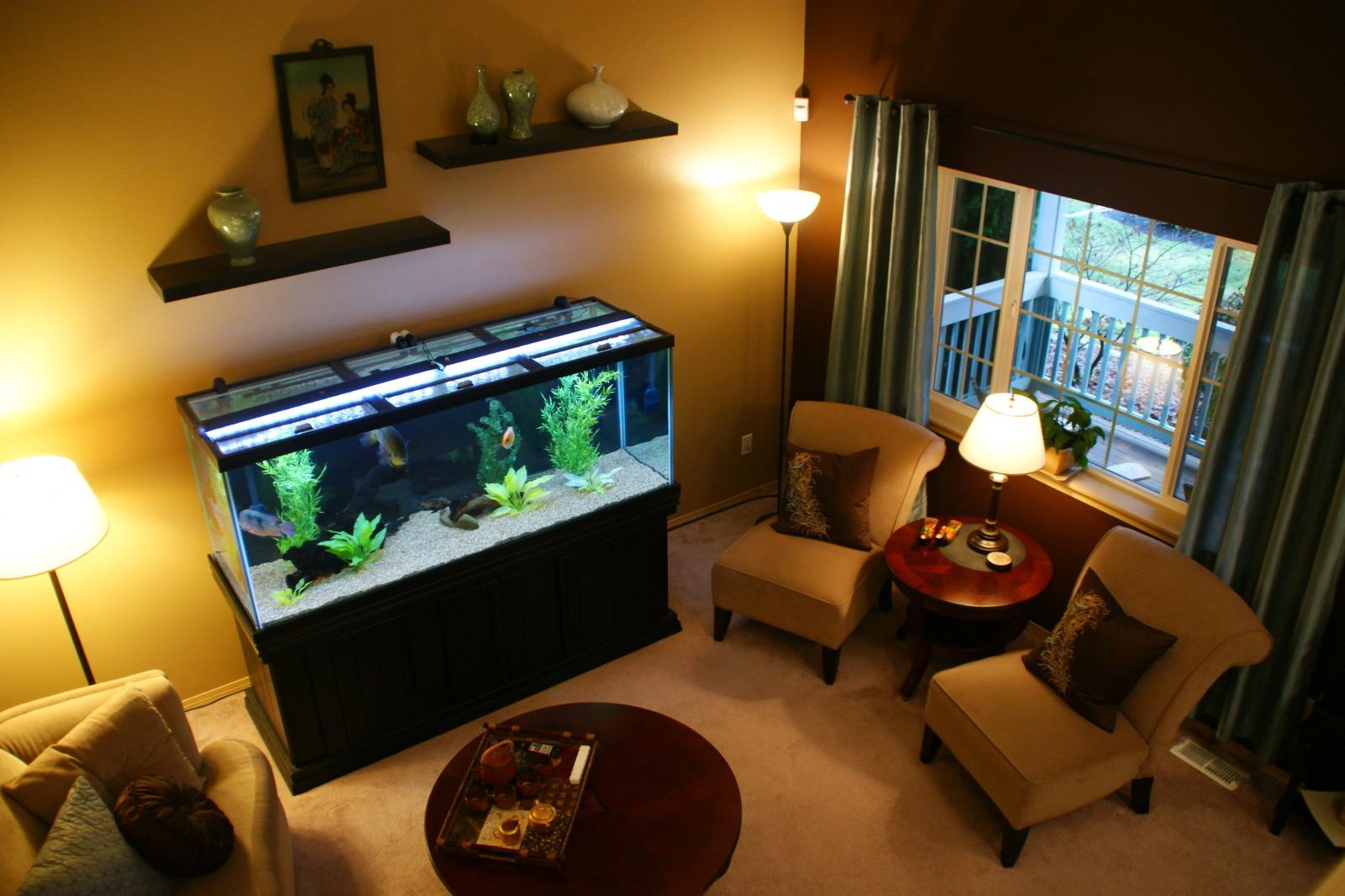 Aquarium Rumah