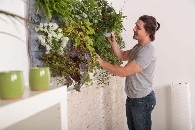 tanaman vertical garden