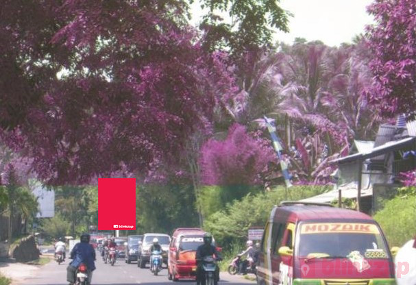 Sewa Billboard - Baliho BDLIBBL03 - B, Jalan Imam Bonjol - Kota Bandar Lampung - kota bandar lampung