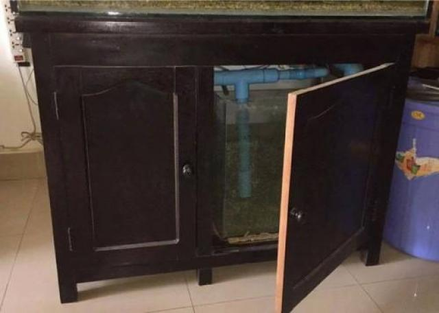 Used large fish tanks for sale in Cambodia - 3/3