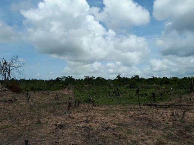 farming land around kampong thom - 3/5