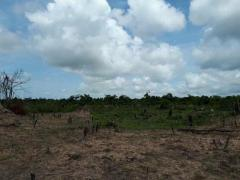 farming land around kampong thom