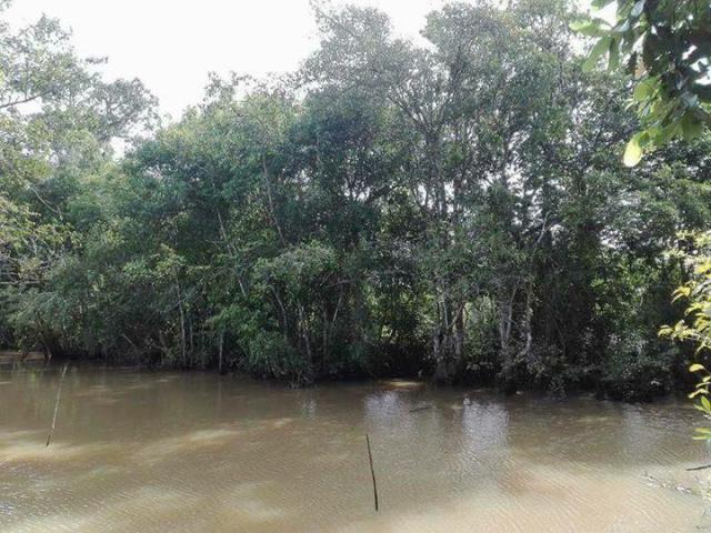 farming land around kampong thom - 5/5