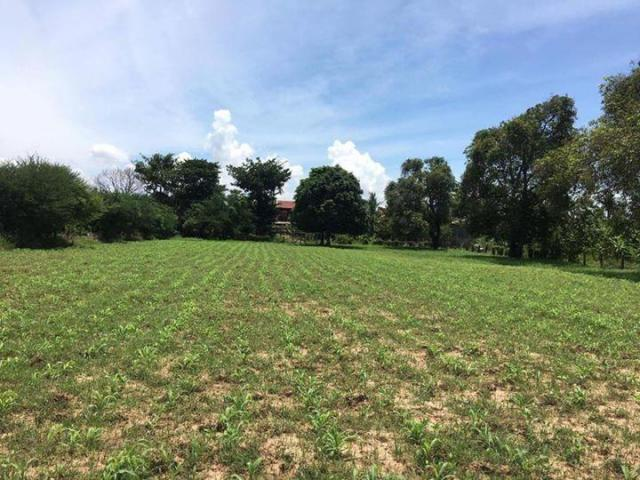 Land for sale kandal province - 1/8