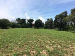 Land for sale kandal province - Image 1/8