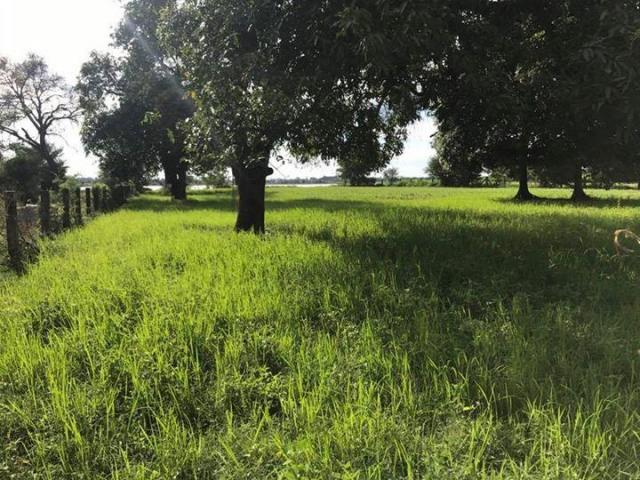 Land for sale kandal province - 4/8