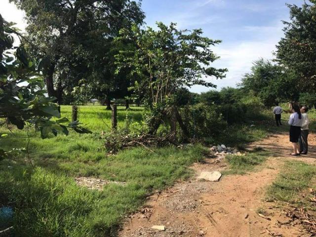 Land for sale kandal province - 5/8