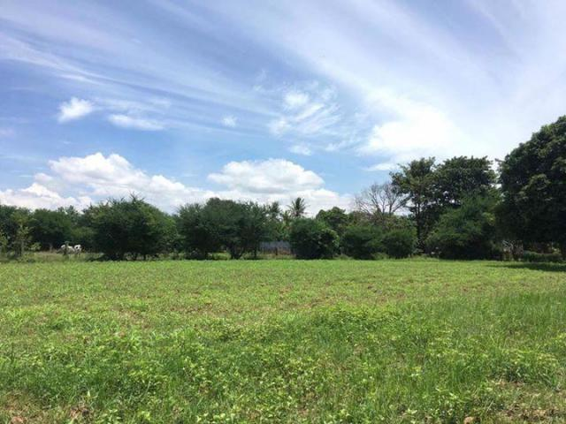 Land for sale kandal province - 6/8