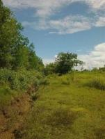 Land urgent sale - Image 3/4