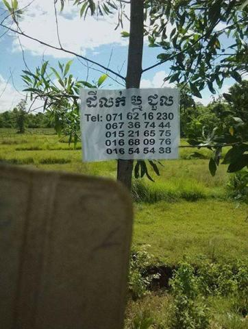 Land urgent sale - 4/4
