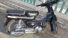 HONDA CUB 100cc