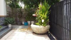Single Villa for rent - Image 2/7