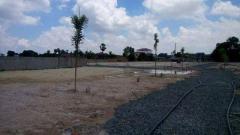 ដីលក់ត្រូវការប្រាក់បន្ទាន់អាចចចារបាន | Land for sale urgent