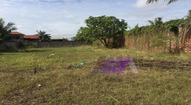 Land for rent  - 1/1