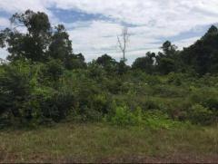 102 Hectare at Ream - Sihanouk Ville Land