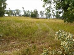 Land for sale at Stueng Hav in Sihanoukville