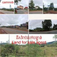 ដីលក់បន្ទាន់ (Land for sale agent )