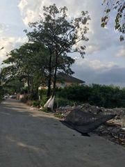 ขายที่ดินเปล่า 236 ตรว. ถนนแบริ่ง ซอย33 แขวงบางนา เหมาะสำหรับสร้างบ้านอยู่อาศัย หรือการลงทุน
