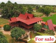 ขายบ้านทรงไทยสวยงามมาก 500 ตรว พร้อมสระน้ำ อ.ดอนตูม จ.นครปฐม หลังใหญ่ พื้นที่ใช้สอยกว้าง