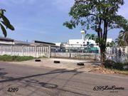 ขายด่วนที่ดินสร้างโรงงาน บางกระเจ้า สมุทรสาคร พื้นที่สีม่วง รหัสSH290