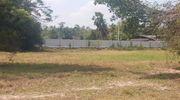 ขาย/เช่าที่ดิน 5 ไร่ แปลงสวย ป่าบอน ติดถนนเพชรเกษม เดินทางสะดวก ทำเลน่าลงทุน ในพัทลุง