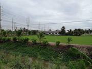 ขาย  ที่ดิน 11-0-72 ไร่  ติด อบต.คลองขวาง ที่ดิน หน้ากว้าง 60 เมตร ติดถนนใหญ่บางกรวยไทรน้อย 11ไร่ 72ตรว