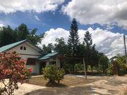 ขายด่วน! บ้านสวน ผลไม้ผสม อ.เกาะคา จ.ลำปาง ดินดี สวนสวย คุ้มค่าน่าซื้อ
