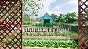 ขาย บ้านเดี่ยว จ.นครนายก สไตล์นอร์ดิก ใช้ชีวิตสโลไลฟ์ สัมผัสธรรมชาติชิวๆ บ้านสวนแสนสุข 80 ตรม. 2 งาน 0 ตร.วา ราคาเบาๆเพียงตรว.ละ17500 บาท