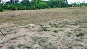 ขายที่ดิน 2 ไร่ 220 ตรว. ซอยจริยา ถนนทวีราษฏร์ภักดี ต.แม่น้ำ อ.เกาะสมุย จ.สุราษฏร์ธานี