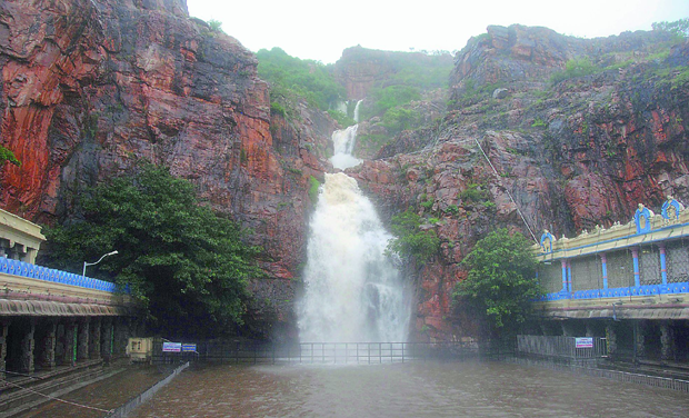 Persistent rains for two days in Tirumala made the waterfalls and streams come alive. (Photo: DC)