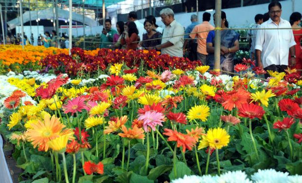 themed flower show set to go ac indoors