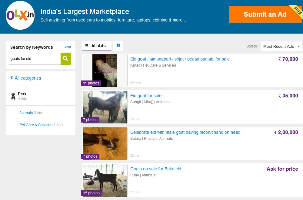 Now, you can buy and sell goats online for Bakra-Eid!