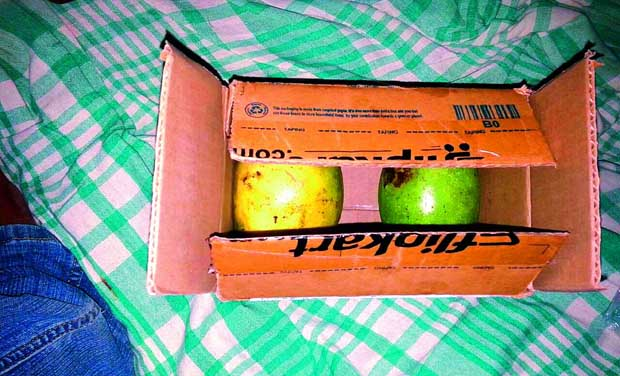The box containing mangoes sent to Chiluveri Srucharan. (Photo: DC)