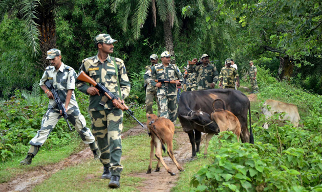 Image result for Border Security Forces (BSF)