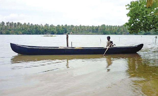 Ithikkara river-Paravur lake ecosystem is heading towards permanent ecological degradation, says a study conducted by HELP Foundation, an NGO based here. (PHoto: DC)