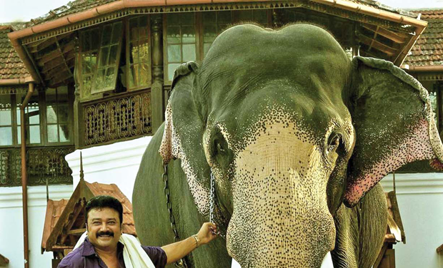 Actor Jayaram has written a book, Aalkoottathil Oranapokkam, on his pet obsession