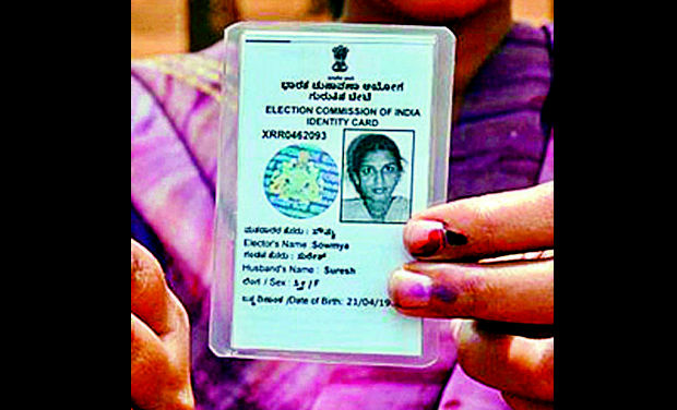 sample voter id card india