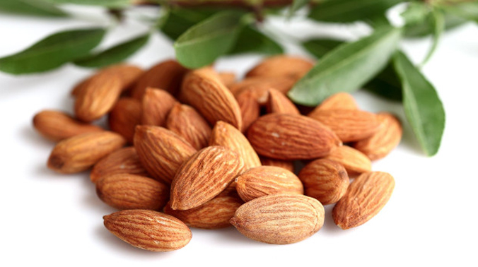 They are good source of plant protein, essential fatty acids, vitamin E.